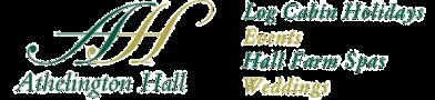 motivational_speaker_orlando_tinygiant_jeff_steinberg_home_page_logo_slider_fourth_client_logo